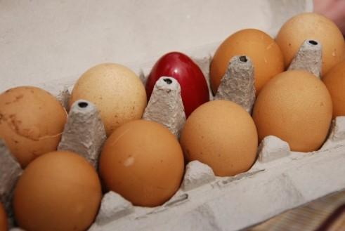 ביצים חומות