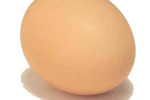 אתגר הביצים הלוהטות של פודגבר לקיץ 2012